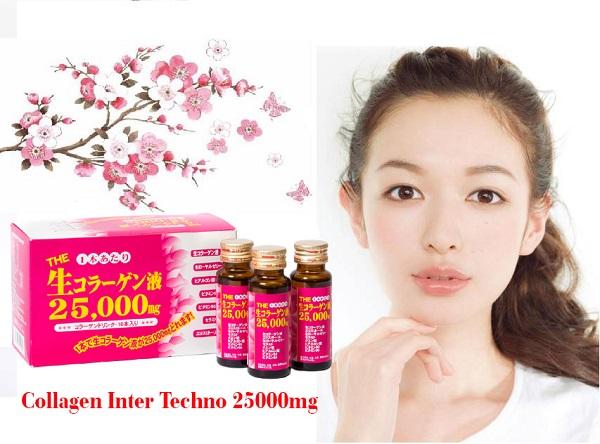 Collagen Inter Techno 25.000mg