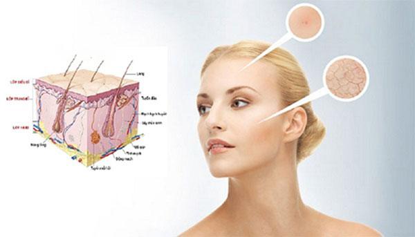 Tác dụng điển hình của collagen