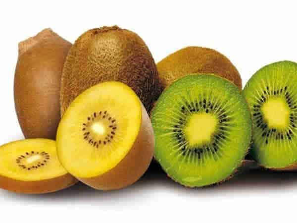 Kiwi chứa collagen Type 2