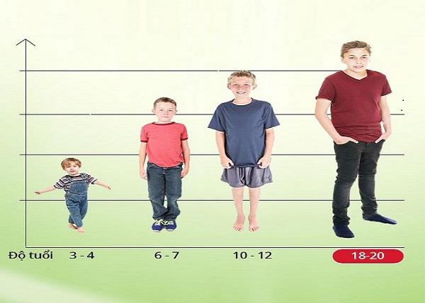 Giai đoạn phát triển chiều cao và cân nặng