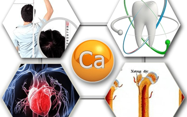 Mối liên hệ giữa canxi với các bộ phận trong cơ thể