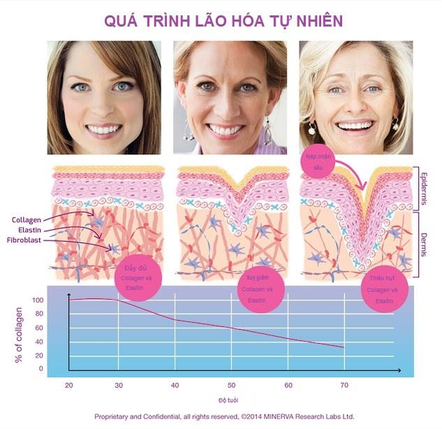 Collagen - Món quà kỳ diệu cho làn da