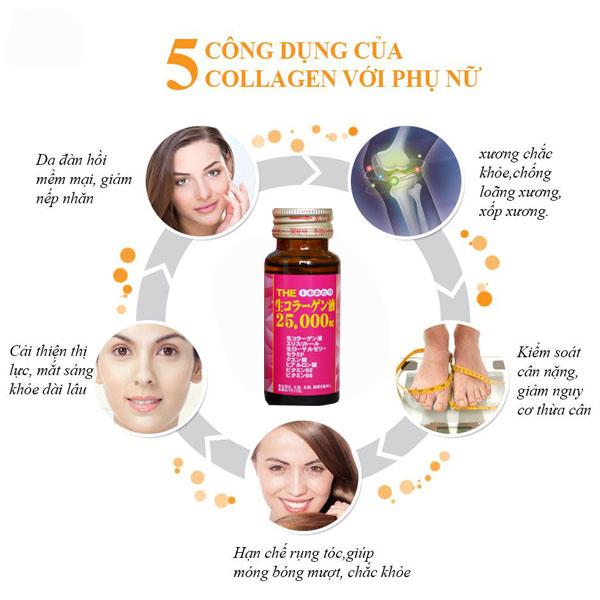Bổ sung Collagen từ những nguyên liệu dễ kiếm
