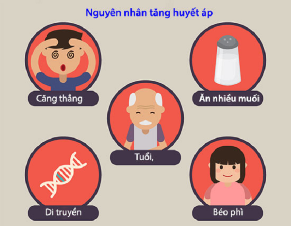 Một số nguyên nhân cao huyết áp ở người già