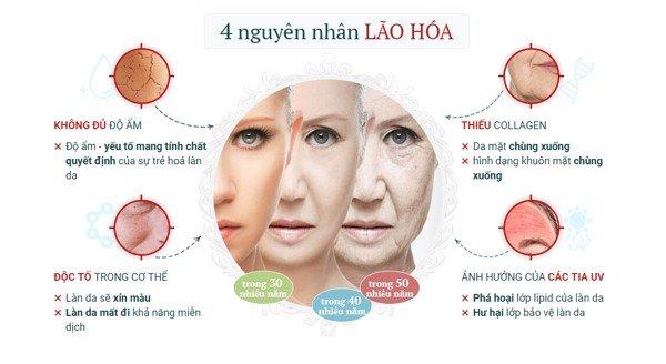 Giai đoạn thay đổi hàm lượng Collagen