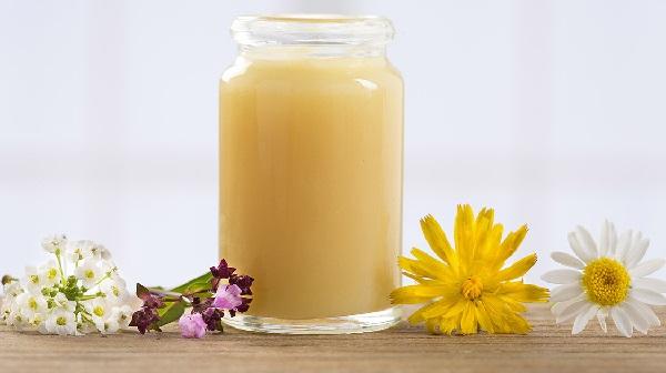 Thành phần dinh dưỡng trong Sữa ong chúa